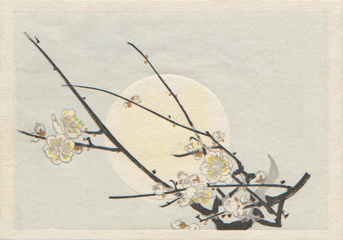 Plum Blossoms in Moonlight